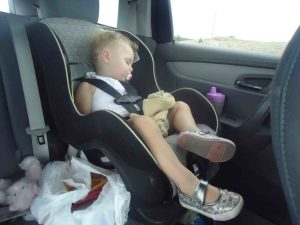 Sky asleep in car