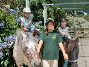 Hawke's Bay Zoo Pony Rides