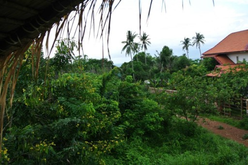 Kep - View from bungalow