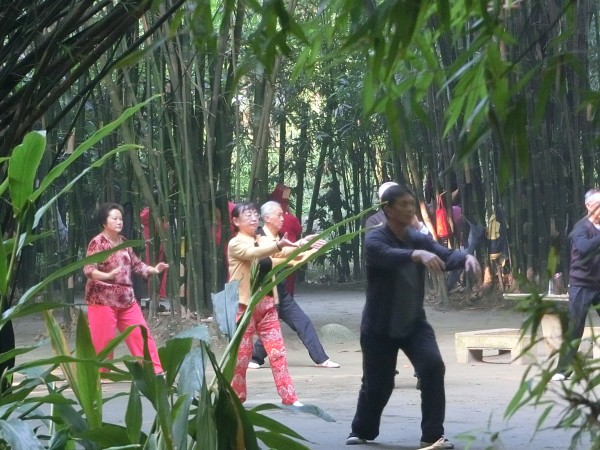 Tai chi in the park - shrink