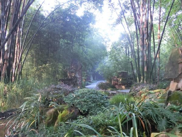 Wangjianglou Park - shrink