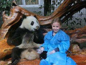 When Daisy met a panda - shrink