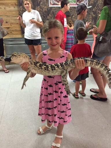 Louisiana -Houma - daisy with alligator