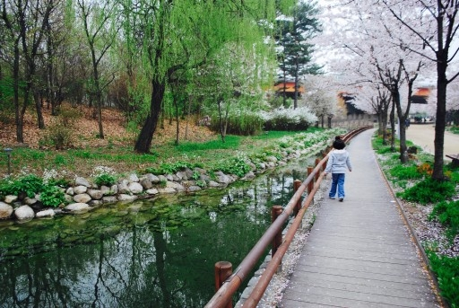 Daughter walking in Seoul Forest