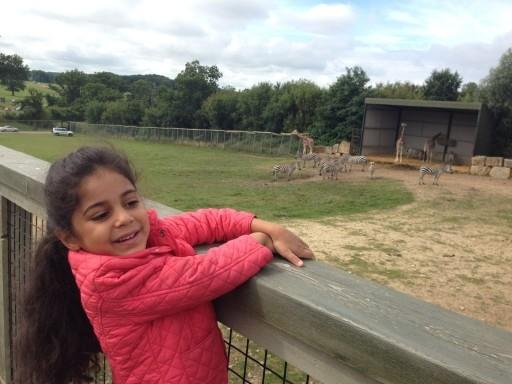 Longleat Safari Park 2